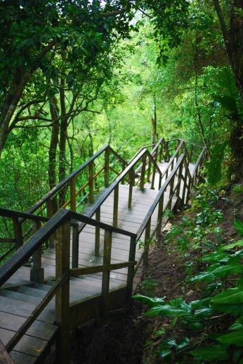 The climb up, Tikal