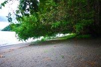 Black sand beach, Nature Reserve, Ometepe, Nicaragua