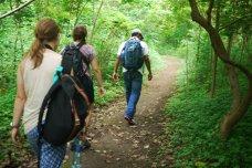 Nature Reserve, Ometepe, Nicaragua