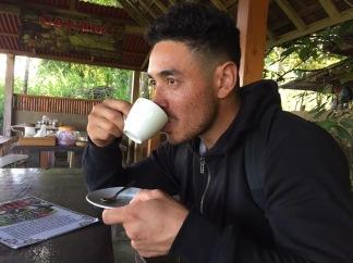 Coffee and chocolate plantation